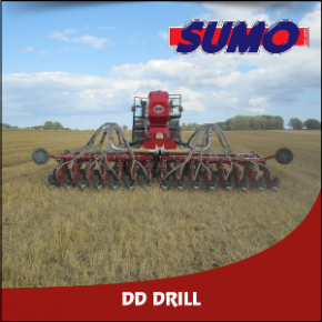 Sumo DD Drill