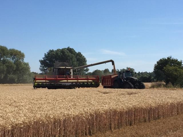 r-c-boreham-contract-farming-deutz-combining-1