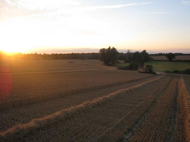 r-c-boreham-contract-farming-view-1