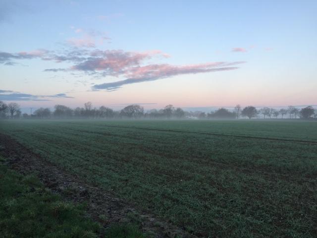 r-c-boreham-contract-farming-view-9