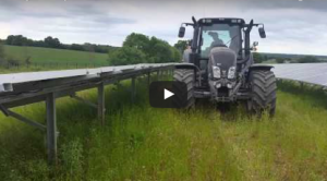 teagle-handy-inter-row-mower