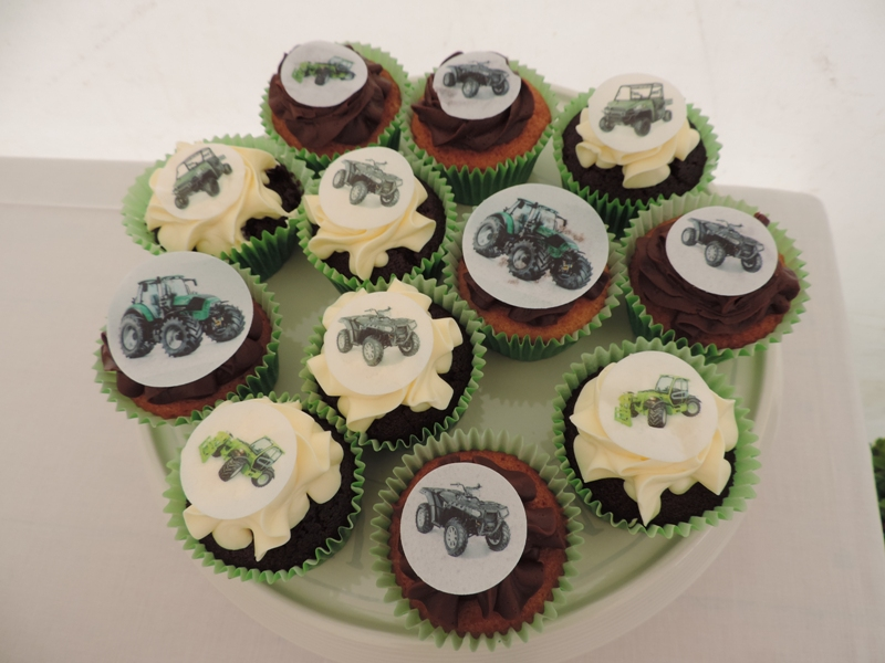 yfc-show-2016-cakes